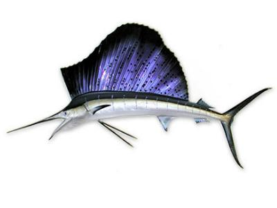 Fiberglass Sailfish Mount Replica
